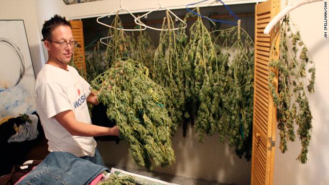 marijuana-growing-green-rush-1217.jpg